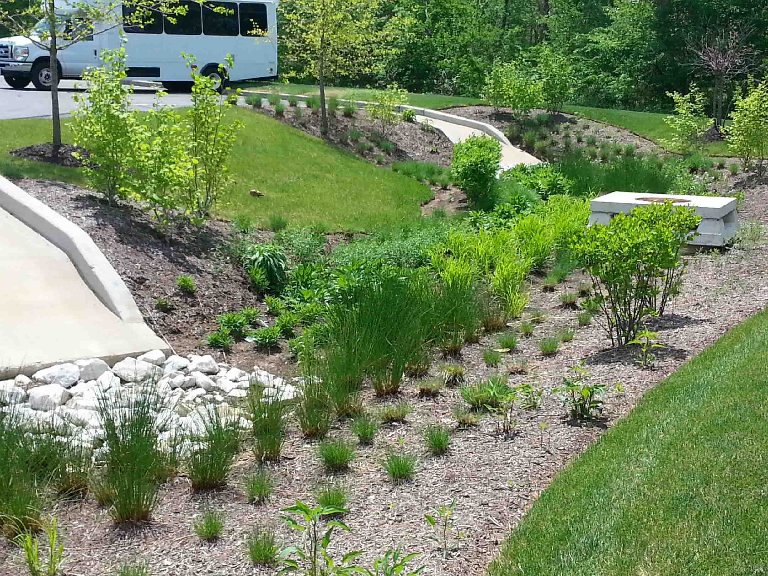 Stormwater Management Basin : Bioretention what does it do how work